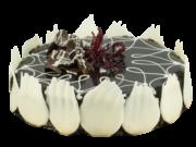 torta-setteveli
